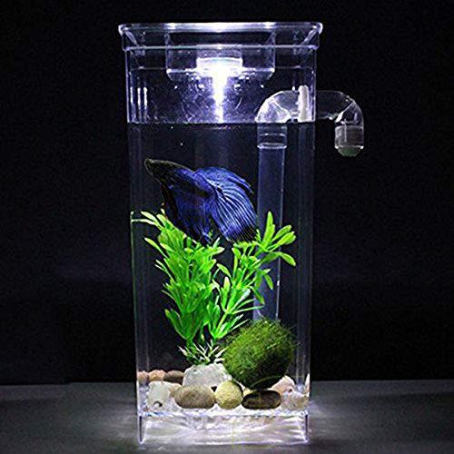 BABYSq Tanque de Peces autolimpiante, Mini Acuario con Juego de LED, para la decoración del hogar Accesorios para Mascotas: Amazon.es: Hogar