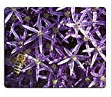 MSD Mouse Pad Natural Rubber Mousepad IMAGE ID 31287874 The photography and closeup of the flower of the Persian onion and a bee