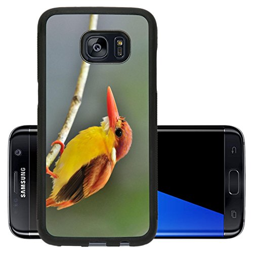 Luxlady Premium Samsung Galaxy S7 Edge Aluminum Backplate Bumper Snap Case IMAGE ID 31333271 Bird Rufous backed Kingfisher Thailand