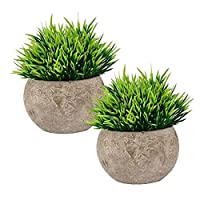 The Bloom Times Fake Plant Bathroom/Home Decor, Small Artificial Faux Greenery House Decorations (Potted Plants)