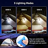 Lepro LED Camping Light Bulbs Tent Lamp with Clip