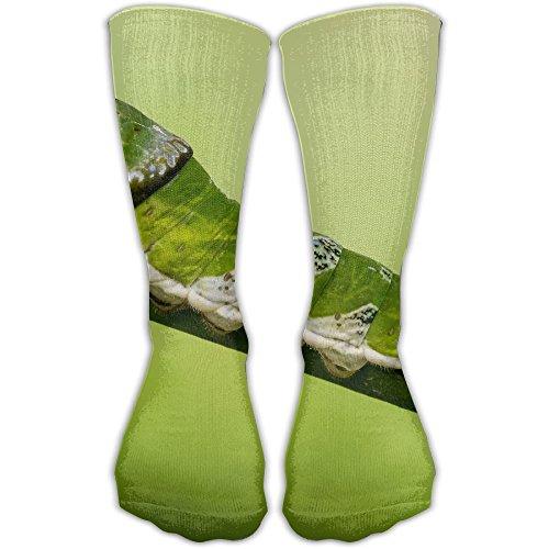 (Unidentified Papilio Larva Stratford Butterfly Farm Unisex Printing Seafarer Socks Deluxe Personality Short Sock 30CM )