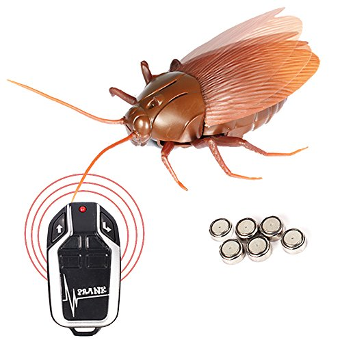 (Running Ant Remote Control Cockroach Realistic Prank Cockroach Prank Trick)