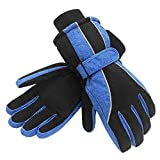 Terra Hiker Waterproof Winter Ski Gloves Insulation for Women