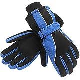 Terra Hiker Water-Resistant Microfiber Winter Ski Gloves 3M Thinsulate Insulation for Women