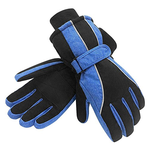 Terra Hiker Waterproof Winter Warm Ski Gloves 3M Thinsulate Snowmobile Cold Weather Gloves for Men, Women, Adult -