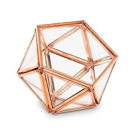Amazon Com Bella S Garden Geometric Terrarium Container Desktop