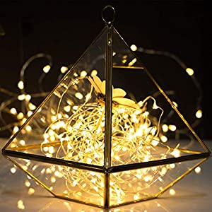 12 Pack Fairy Lights 7Ft 20 LED Firefly Lights Battery Operated String Lights Starry Moon Lights for DIY Wedding Bedroom Indoor Party Christmas Decorations Warm White (Silver Wire)