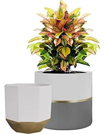 Rouge Étoile de Noël Pot De Fleur 10 x 12 cm Céramique Or Plante Cadeau Décoration