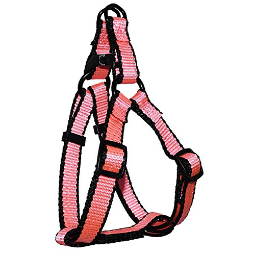 BK Adjustable Easy-On Dog Harness with Trim, Small/5/8