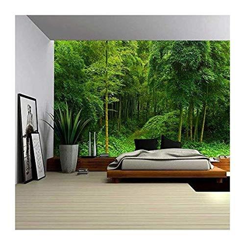 Hidden Path in a Bamboo Forest Wall Mural