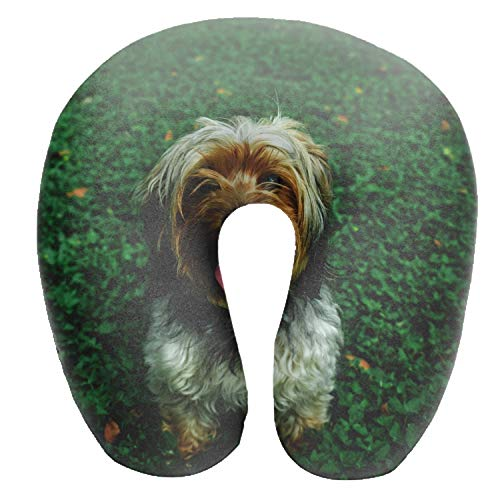 - Travel Pillow Neck Support on a Train,Airplane,Car,Bus or While Camping - Comfortable Chinese Imperial Dog Muzzle Tongue U Shaped Cushion