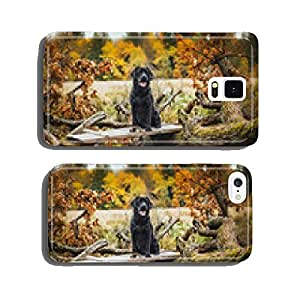 black labrador autumn in nature, vintage cell phone cover case Samsung S5