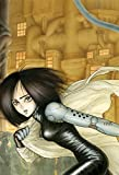 img - for Battle Angel Alita Deluxe Edition 3 book / textbook / text book