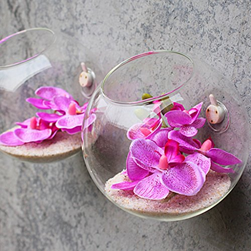 Money coming shop New Clear Glass Wall Hanging Vase Bottle for Plant Flower Terrarium Container for Gift DIY Home Wedding Decoration Free Shipping