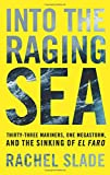 #8: Into the Raging Sea: Thirty-Three Mariners, One Megastorm, and the Sinking of El Faro