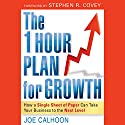 The One Hour Plan for Growth: How a Single Sheet of Paper Can Take Your Business to the Next Level Audiobook by Joe Calhoon Narrated by Danny Campbell