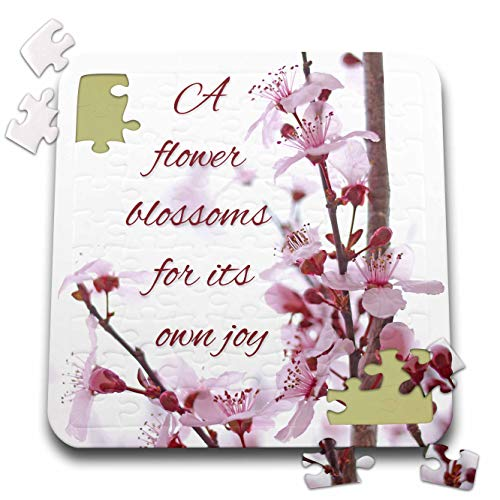(3dRose Stamp City - Typography - Pink Cherry Blossom Flowers in Bloom. A Flower Blooms for its own Joy. - 10x10 Inch Puzzle (pzl_301345_2) )