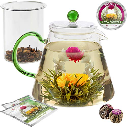 Teabloom Stovetop Safe Glass Teapot with Loose Tea Infuser (34 oz) - Blooming Tea Flowers Included (2) - Blooming Oasis ()