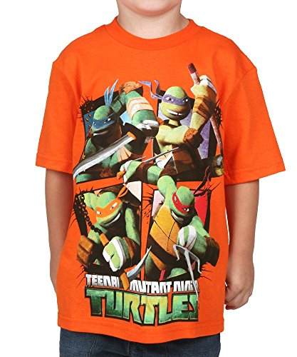 Big B (Ninja Turtles T Shirts)
