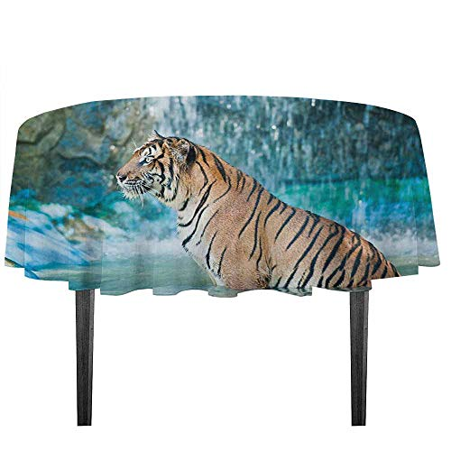 (kangkaishi Tiger Easy Care Leakproof and Durable Tablecloth Feline Beast in Pond Searching for Prey Sumatra Indonesia Scenes Outdoor Picnic D59.05 Inch Turquoise Pale Brown Black)