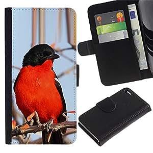 Planetar® Modelo colorido cuero carpeta tirón caso cubierta piel Holster Funda protección Apple Apple iPhone 4 / iPhone 4S ( Red Blue Black Winter Nature Branch Tree )