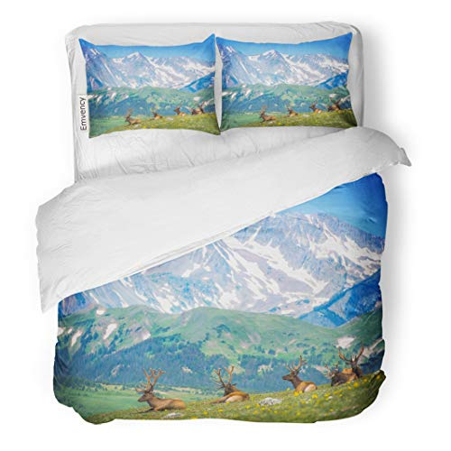 (Semtomn Decor Duvet Cover Set Twin Size North American Elks Rocky Mountain Meadow in Colorado United States Resting 3 Piece Brushed Microfiber Fabric Print Bedding Set Cover)