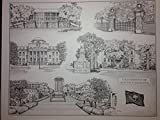University of South Carolina 16x20 pen and ink collage print