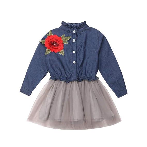 c6f3196d5 Mitlfuny Verano Niñas Bebé Princesa Vestidos Manga Larga Bautizo Vestido de  Vaquero Rosa Bordado Tul Cosiendo