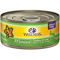 Wellness Complete Health Natural Grain Free Wet Canned Cat Food, Minced Turkey Entrée, 5.5-Ounce Can (Pack Of 24)
