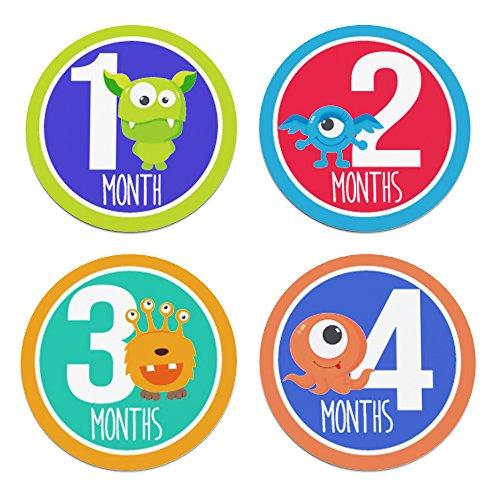 Baby Monthly Stickers Milestone Scrapbook