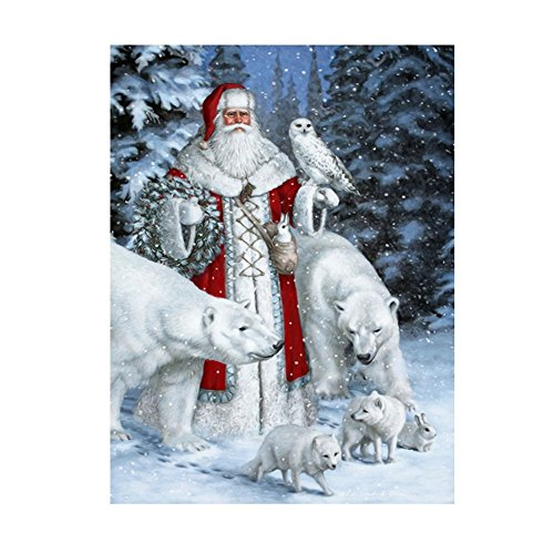 SODIAL(R) Santa Claus & Animals 5D Diamond Painting Embroidery DIY Paint-By-Number Kit Home Wall Decor 3040cm White+Red
