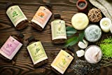 Handcraft Tea Tree Essential Oil - 100% Pure and