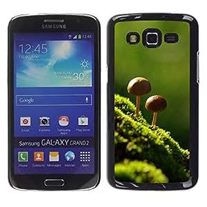Be Good Phone Accessory // Dura Cáscara cubierta Protectora Caso Carcasa Funda de Protección para Samsung Galaxy Grand 2 SM-G7102 SM-G7105 // Nature Beautiful Forrest Green 8