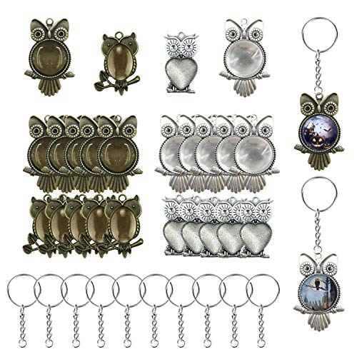 (50 PCS Owl Pendant Trays Kit, Woohome 20 PCS Owl Pendant Trays with 20 PCS Glass Dome Tiles Clear Cameo, 10 PCS Pendant Buckle, Different Shape Pendant Blank Bezels for Jewelry Making)