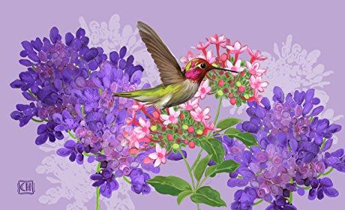 Toland Home Garden Hummingbird And Flowers Indoor Outdoor