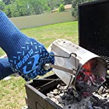 BlueFire Gloves BBQ Grill Firepit Oven Mitts Heat
