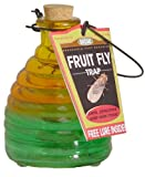 Springstar Glass Fruit Fly Trap