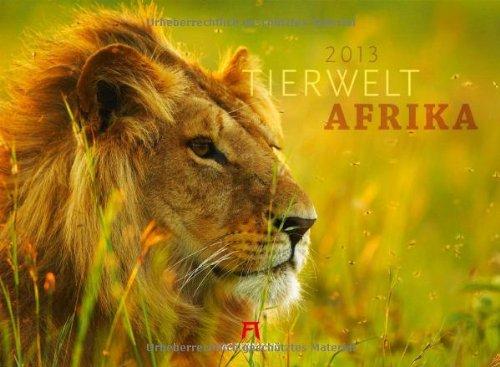 Tierwelt Afrika 2013
