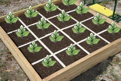 Mr  Garden 5ftx5ft Grid Kit for Raised Bed, Square Foot