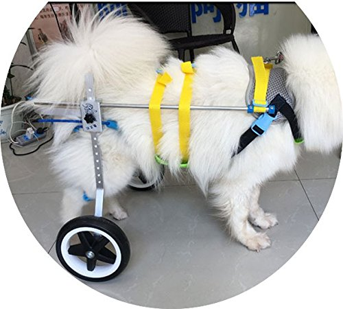 New! Two Wheels Adjustable Dog Wheelchair, cart, 7 Sizes for hind Legs Rehabilitation, 3D Soft Harness,Light Weight, Easy Assemble, Belly Band Specially for Spondylitis (6.New-L) by Newlife Mobility (Image #4)