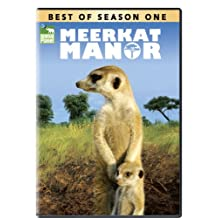 Best of Meerkat Manor - Season 1