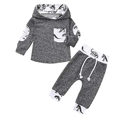 Price comparison product image GoodLock Baby Boys Girls Fashion Clothes Set Infant Dinosaur Print Hoodie Pullover Tops+Pants Outfits 2Pcs (Gray,  6-12 Months)