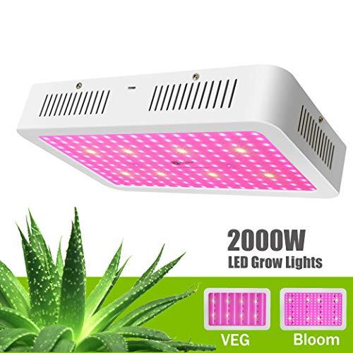 Led Grow Lights Flowering Cannabis