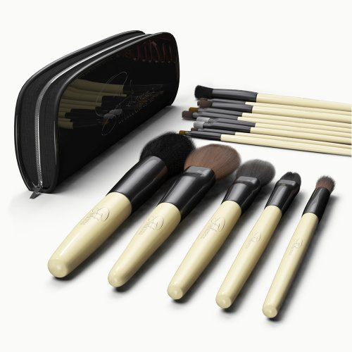 Professional Cosmetic Makeup Brush Case