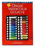Savior-Faire The French School Opaque Watercolor Gouache Tube Sets set of 20 in case with brush