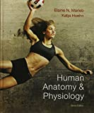Laboratory Investigations in Anatomy and Physiology, Main Version, and Human Anatomy and Physiology Plus MasteringA&P with EText Package, Marieb, Elaine N. and Hoehn, Katja, 0321861302