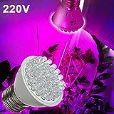 Castnoo 2W Led Grow Light Bulb 220V 38 LED Plant Flower Spectrum Lamp for Hydroponic Greenhouse Organic
