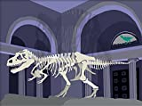 T-Rex Matted Print, 11 x 14