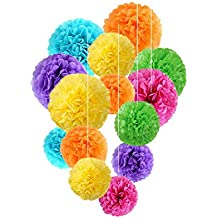 Fadesun 36 Pcs 12 Inch, 10 Inch, 8 Inch Assorted Rainbow Colors Tissue Paper Pom Poms Flower Balls For Birthday Wedding Party Baby Shower Mother's Day Decorations By